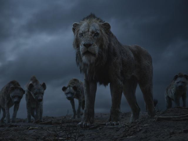 o rei leão 5.png